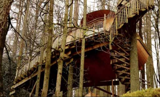 world's coolest treehouses